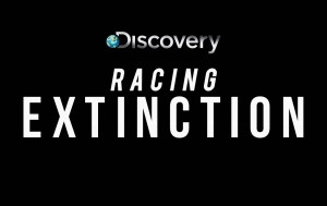 RACING_EXTINCTION_DSC_LOCKUP_OVER