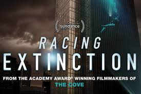 Racing Extinction Movie Night