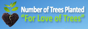 Trees Planted For Love Trees